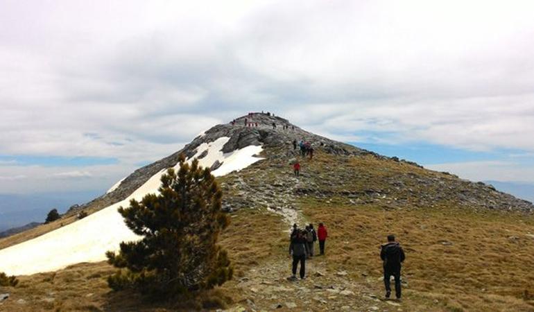 "Résultat de recherche d'images pour ""sarı kız kaz dağları"""